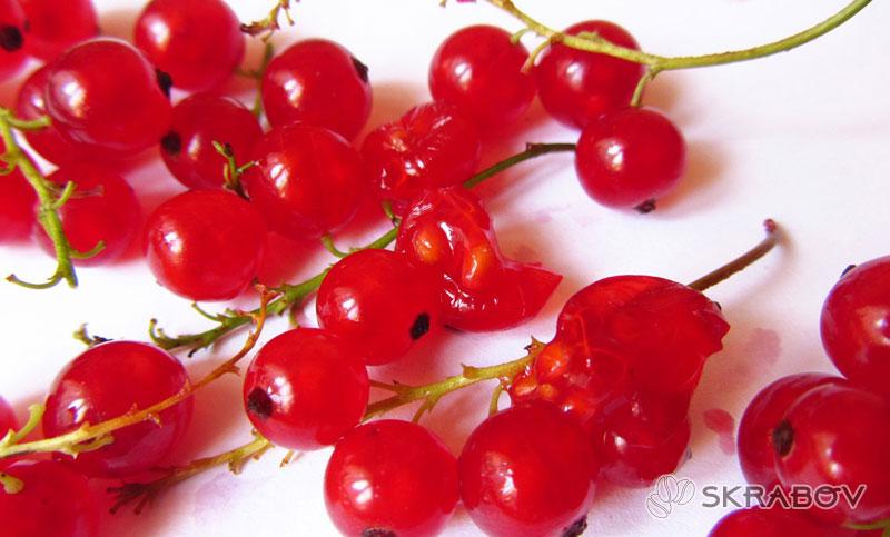 Маска из красной смородины для лица: летние рецепты 17-4